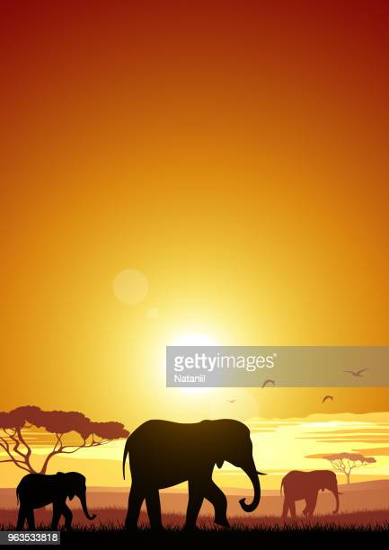 africa - savannah stock illustrations, clip art, cartoons, & icons