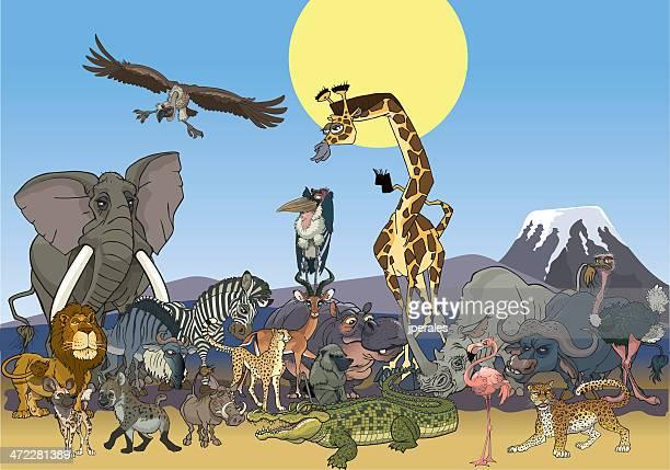 illustrations, cliparts, dessins animés et icônes de afrique wildlife - marabout