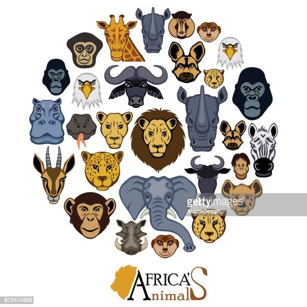 african animal faces collage - african buffalo stock illustrations, clip art, cartoons, & icons