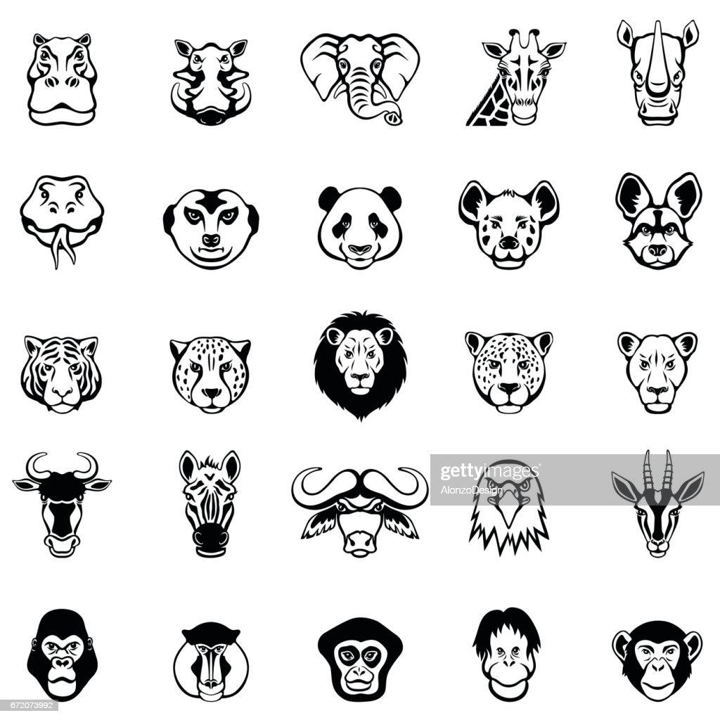 Caras de animales africanos : Ilustración de stock