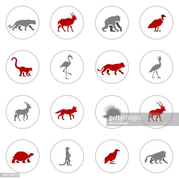 African Animal Icons