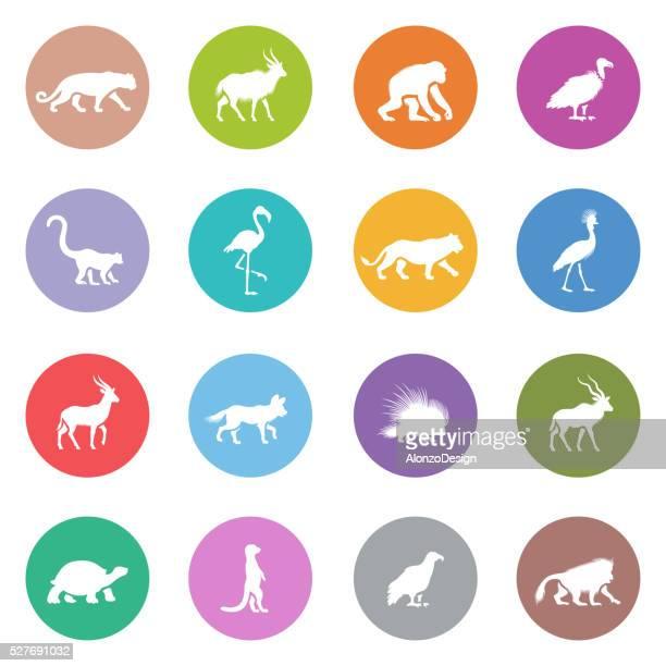 african animal icons - kudu stock illustrations, clip art, cartoons, & icons