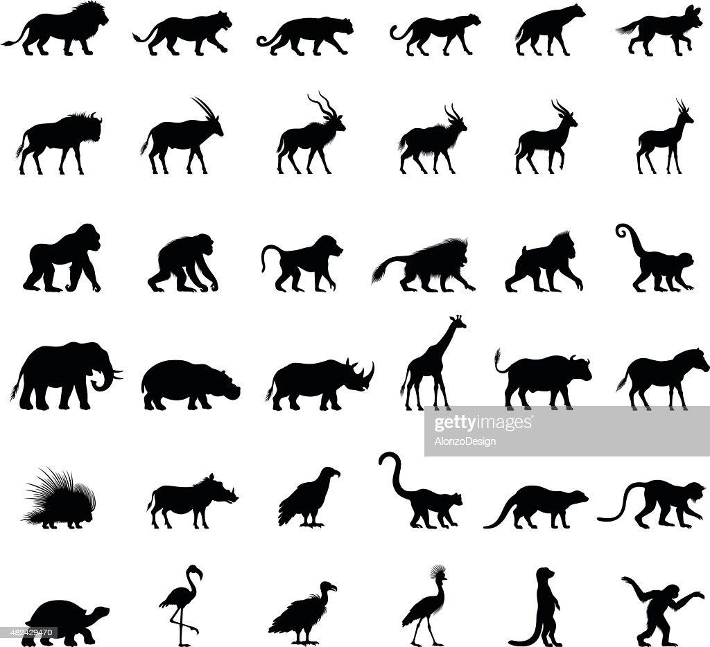 African Animal Silhouettes : Stockillustraties