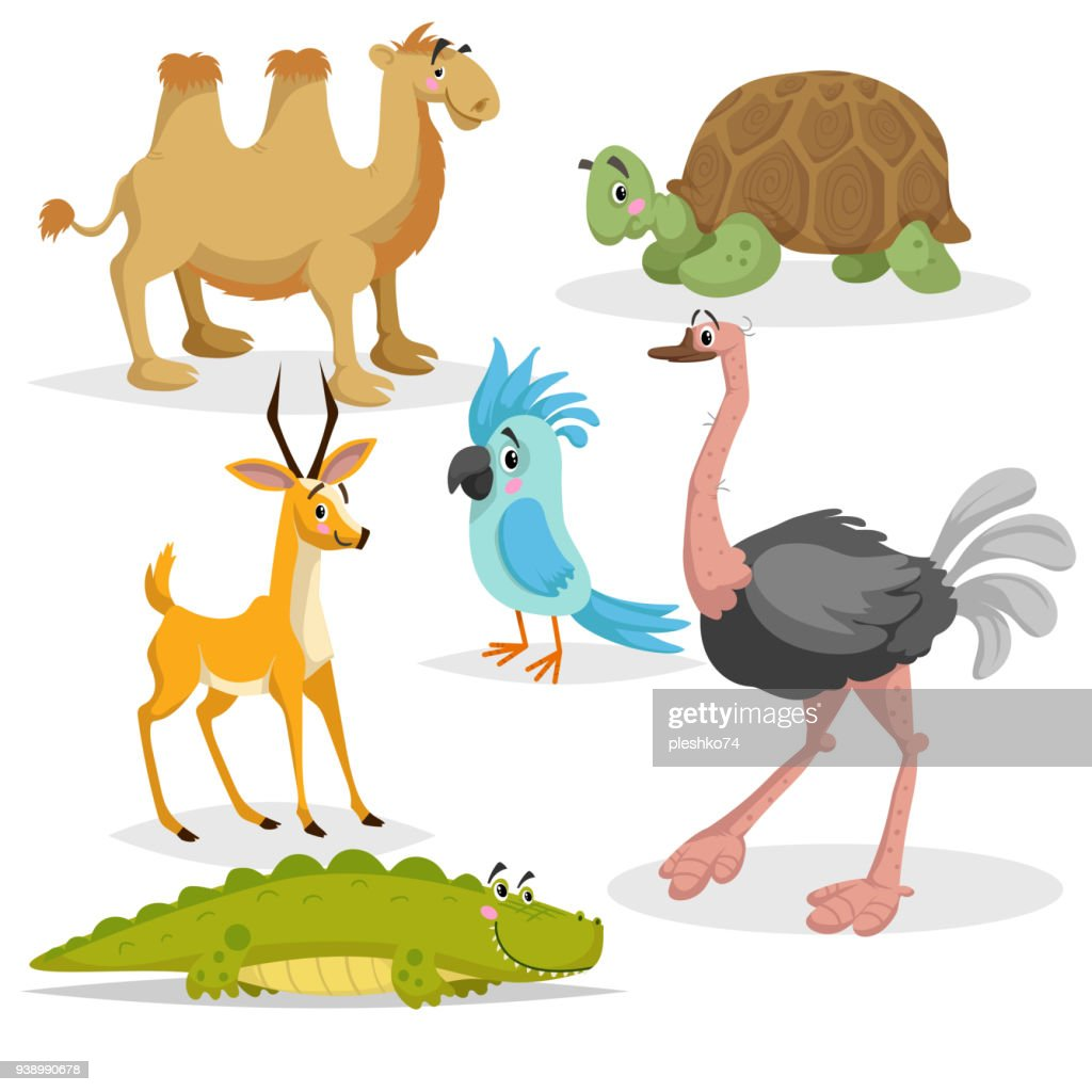 African animals cartoon set. Gazzelle anthelope, crocodile, bactrian camel, big african turtle, parrot and ostrich. Zoo wildlife collection. Vector illustrations isolated on white background.