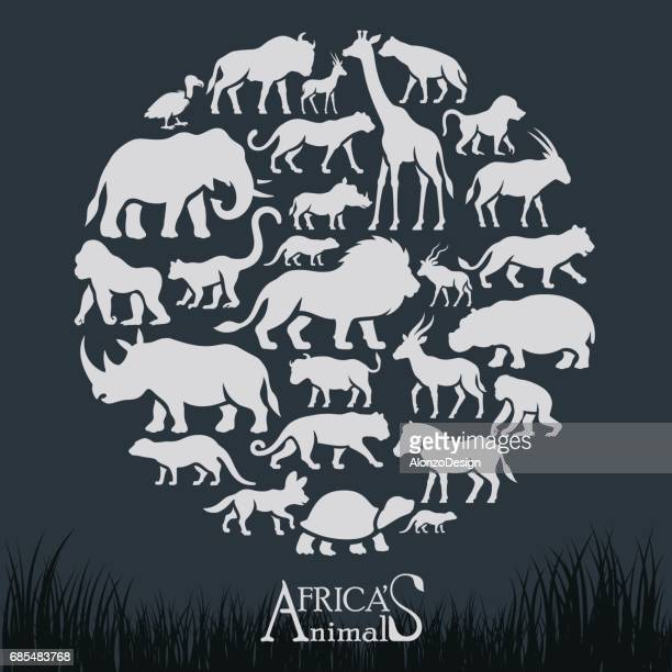 african animals collage - african buffalo stock illustrations, clip art, cartoons, & icons