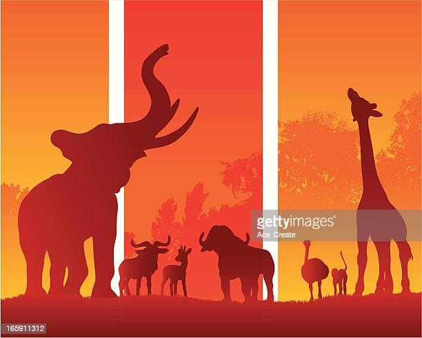 illustrations, cliparts, dessins animés et icônes de animaux d'afrique safari dans la silhouette de l'été - girafe