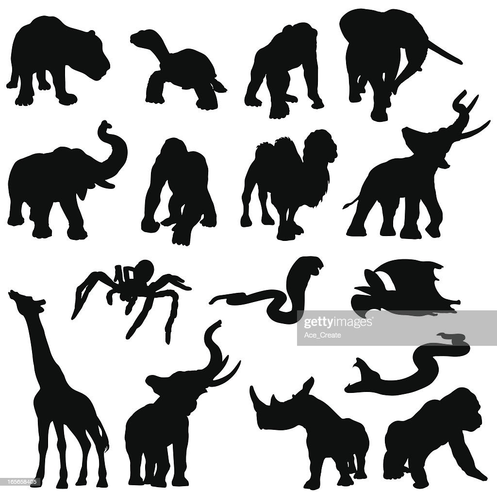 African animals in silhouette : stock illustration