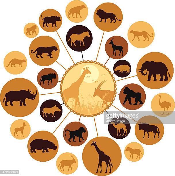 African Animals Montage