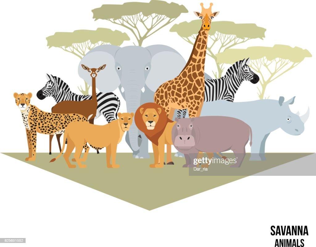 African animals of savanna elephant, rhino, giraffe, zebra, lion, hippo