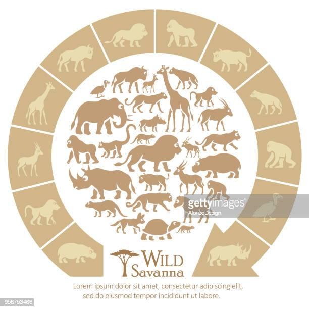 african animals - mandrill stock illustrations, clip art, cartoons, & icons