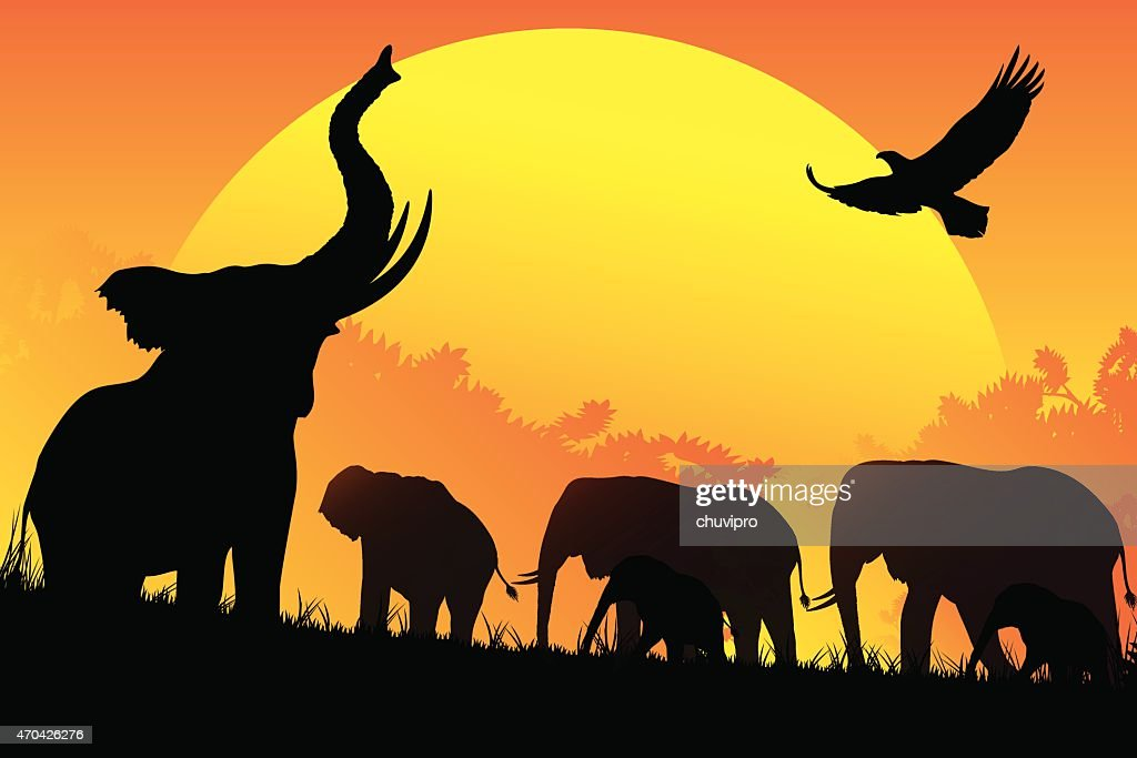 african elephants family silhouettes safari in hot day vector art