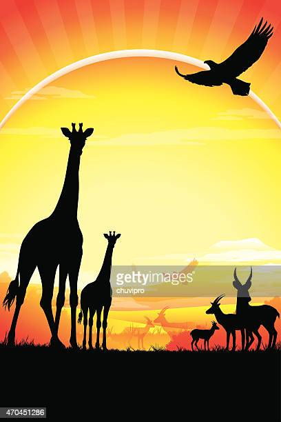 african giraffes, antelopes silhouettes safari against kilimanjaro in hot day - mt kilimanjaro stock illustrations, clip art, cartoons, & icons