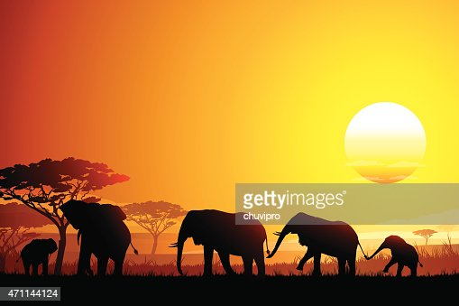 african landscape with funny elephants silhouettes in hot
