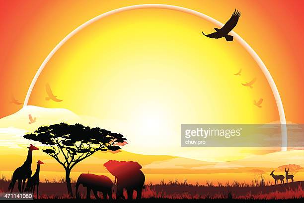 african landscape with giraffes and elephants silhouettes in hot day - mt kilimanjaro stock illustrations, clip art, cartoons, & icons