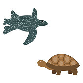 African leatherback turtle and spurred turtle icons in flat style, animal vector illustration