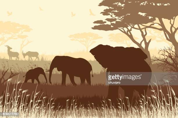 African Safari background with big elephant father, mother, elephant calf and antelopes