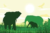 African Safari background with elephant family