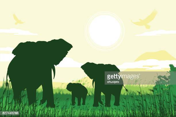african safari background with elephant family - mt kilimanjaro stock illustrations, clip art, cartoons, & icons