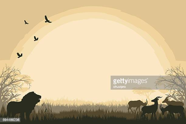 african safari background with lion and antelopes - calf stock illustrations, clip art, cartoons, & icons