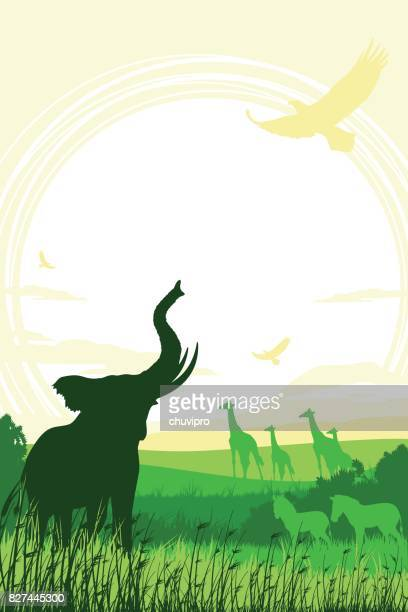 african safari background with trumpeting elephant, giraffes and zebras - mt kilimanjaro stock illustrations, clip art, cartoons, & icons