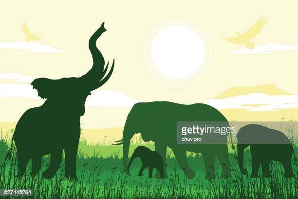 african safari background with trumpeting elephant, mother and calves - mt kilimanjaro stock illustrations, clip art, cartoons, & icons
