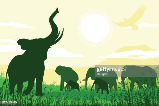 african safari background with trumpeting elephant, mothers and calves - mt kilimanjaro stock illustrations, clip art, cartoons, & icons