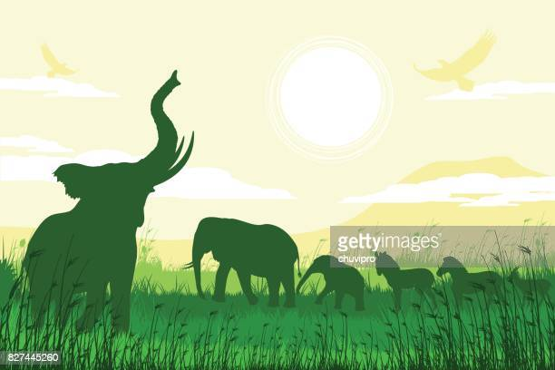african safari background with trumpeting elephants, calves, zebras and antelopes - mt kilimanjaro stock illustrations, clip art, cartoons, & icons