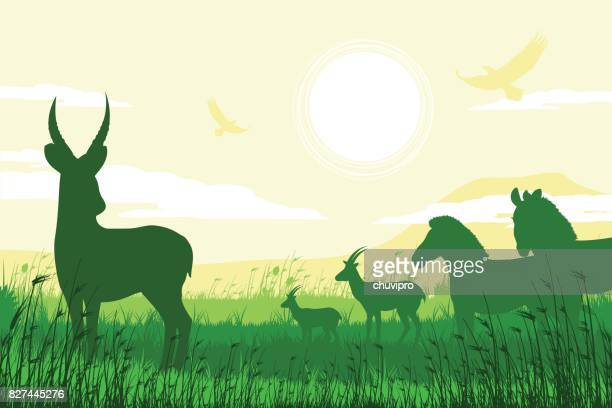 african safari background with waterbuck, zebras and antelopes - mt kilimanjaro stock illustrations, clip art, cartoons, & icons