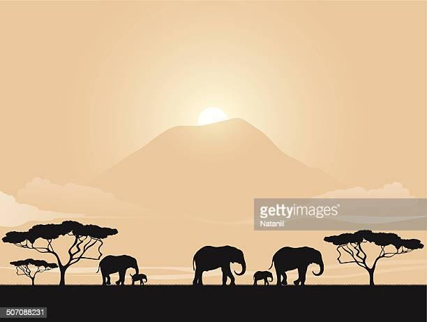 african savannah - savannah stock illustrations, clip art, cartoons, & icons