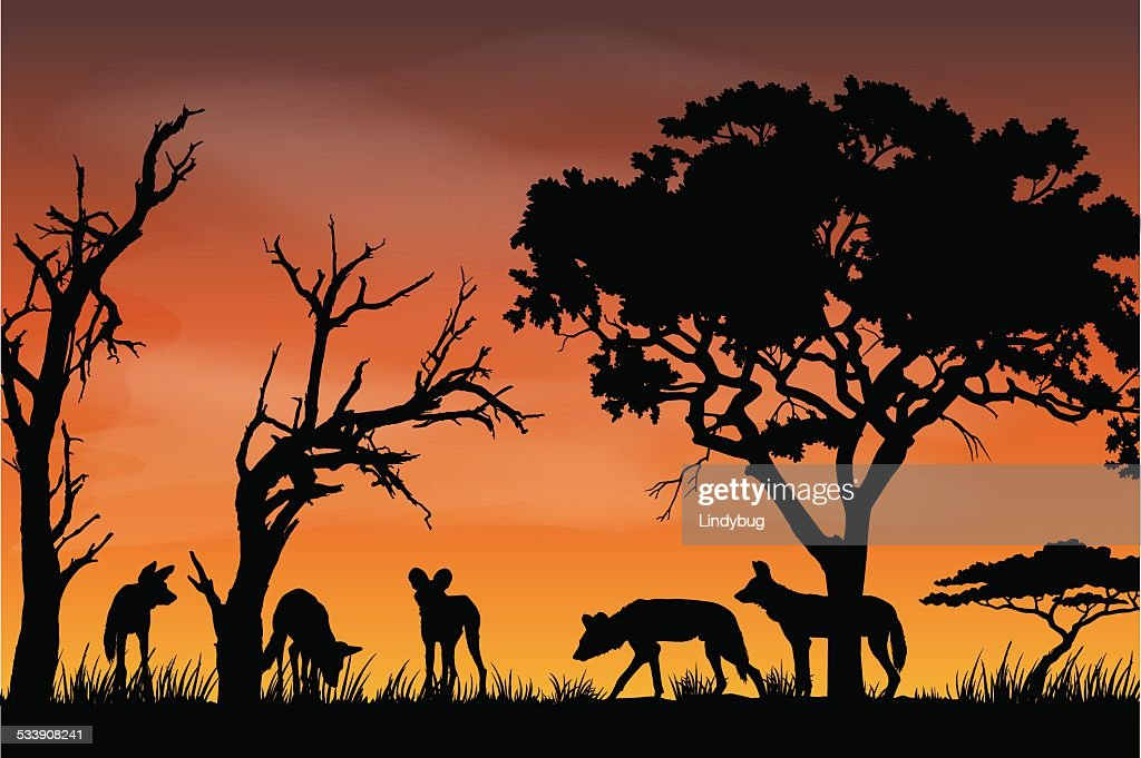 African Wildlife Silhouette