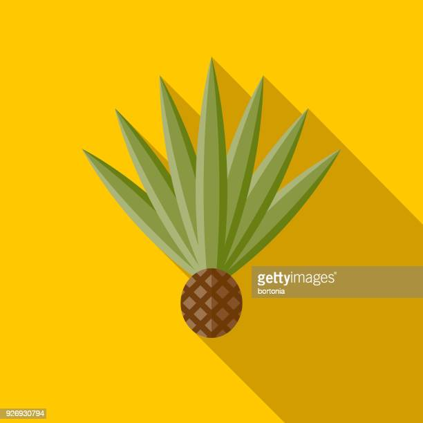 Agave Flat Design Mexico Icon with Side Shadow