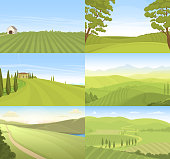 Agricultural farm field set vector