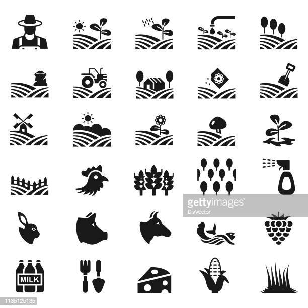 Ensemble d'icônes de l'agriculture et de l'agriculture