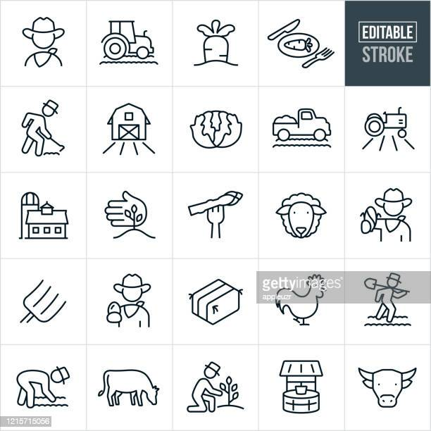 agriculture and farming thin line icons - editable stroke - bull animal stock illustrations