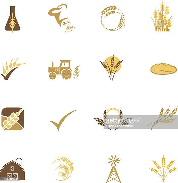 agriculture grain and wheat icon set of sixteen in pastels - whole wheat stock illustrations