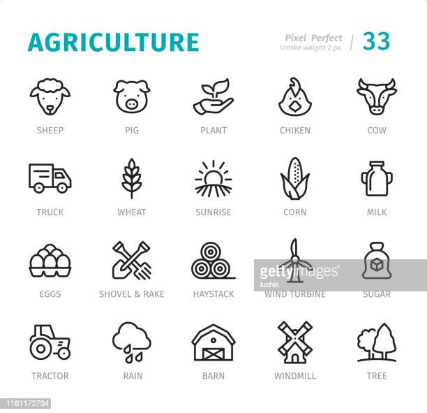 agriculture - pixel perfect line icons with captions - ranch stock illustrations