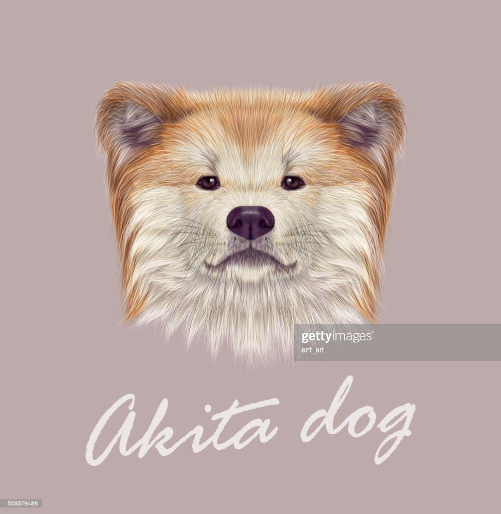 Akita Inu Japanese Dog. : Vector Art