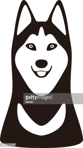 Alaskan Malamute animal face  flat design