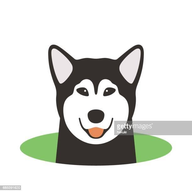 Alaskan Malamute Hund auf dem Loch, beobachten, Vektor-illustration