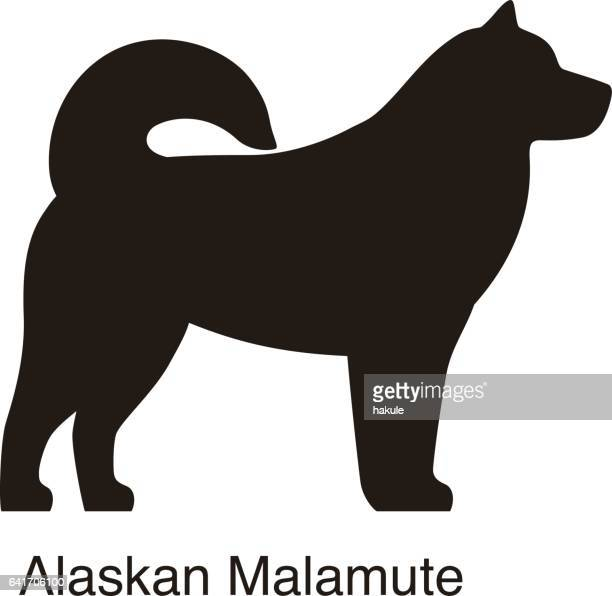 Alaskan Malamute dog silhouette, side view, vector