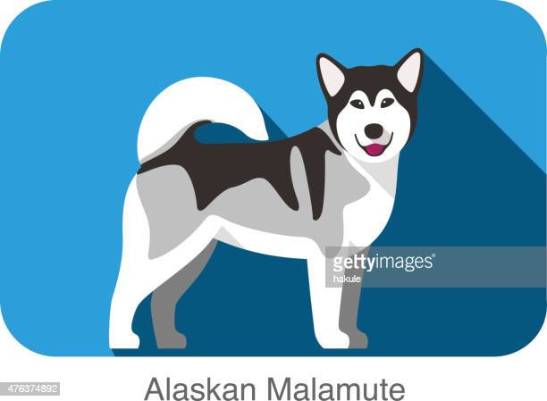 Alaskan Malamute, dog standing flat icon design