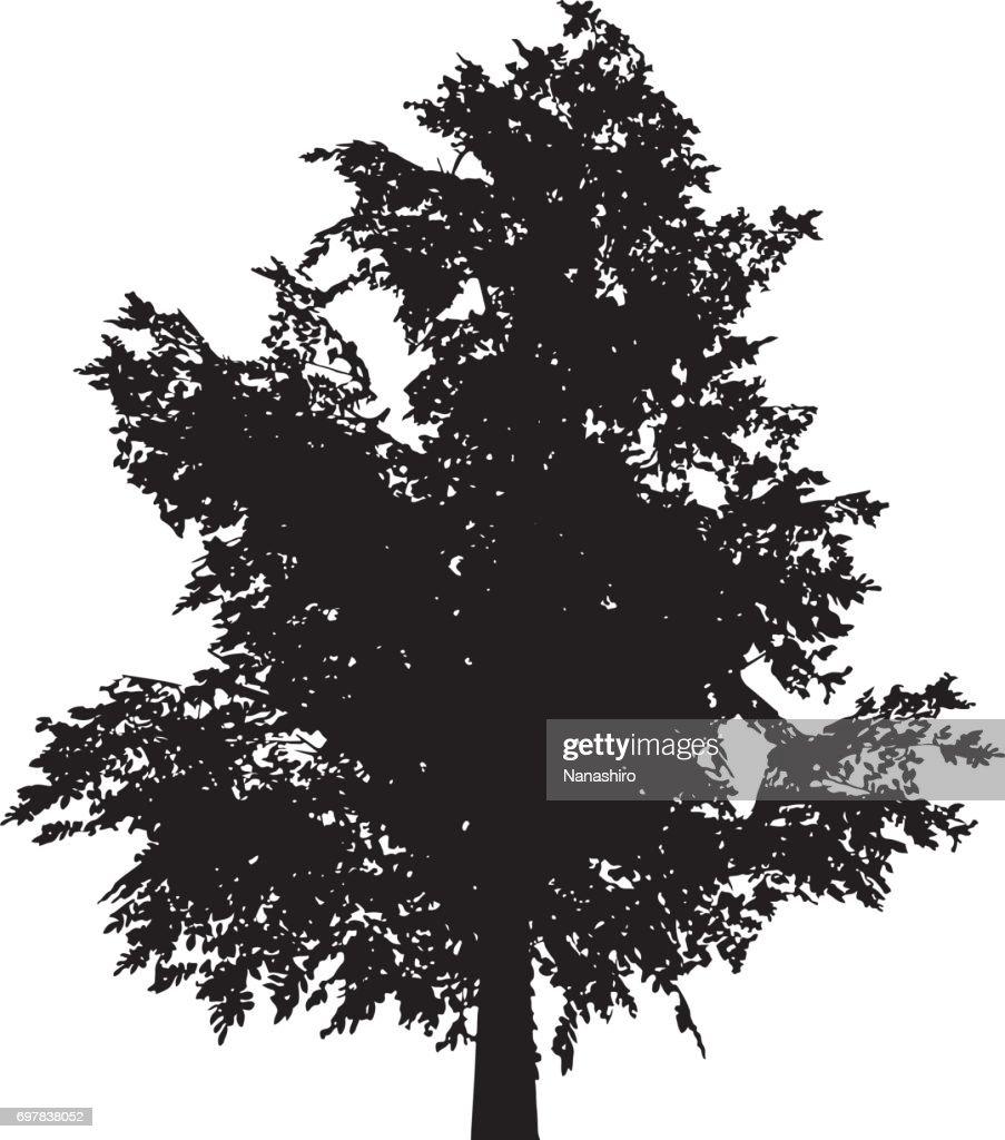 alder tree silhouette shape