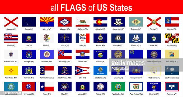 all 50 us state flags - alphabetically - icon set - vector illustration - georgia us state stock illustrations