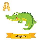 Alligator. A letter. Cute children animal alphabet in vector