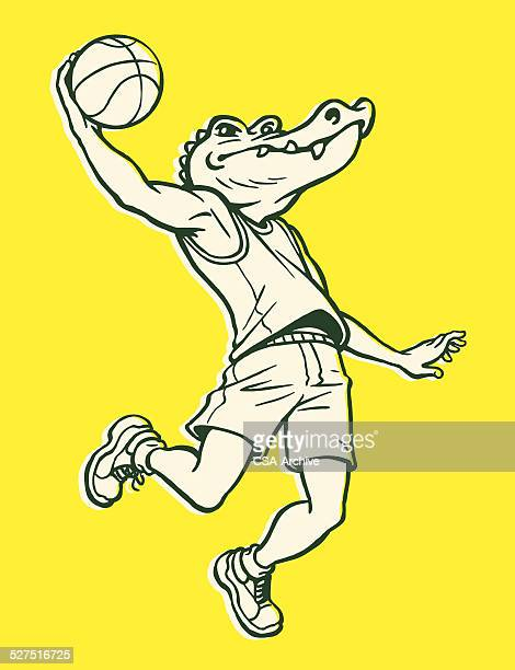 Alligator Jumping With Basketball