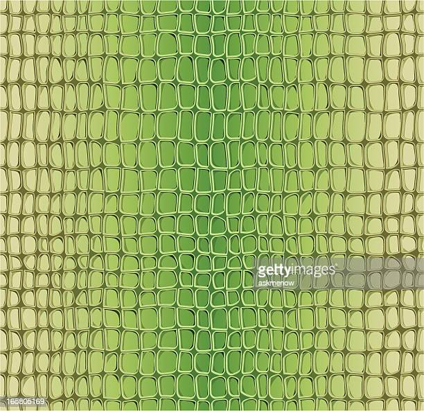 Alligator seamless pattern