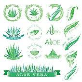 Aloe vera design elements. Stencil style.