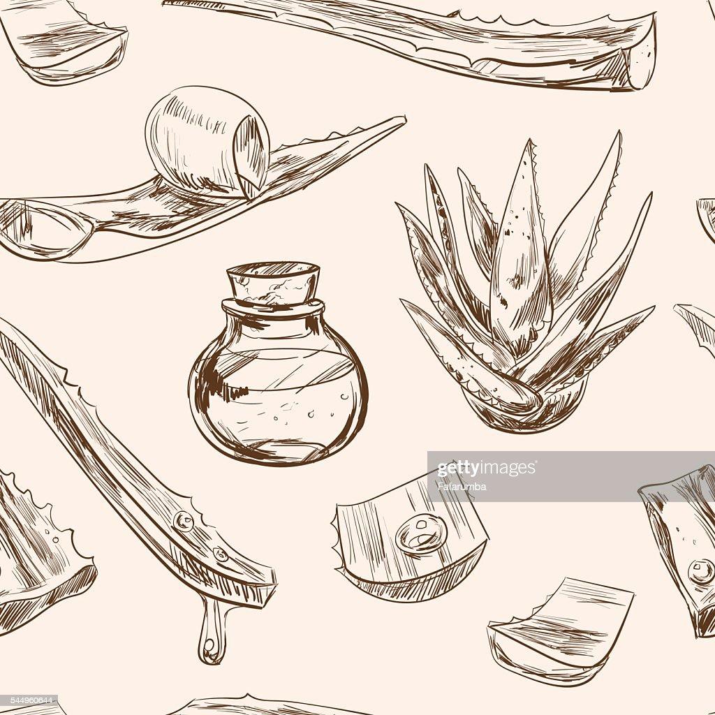 Aloe vera hand drawn set.