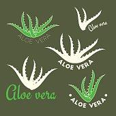 Aloe vera icons