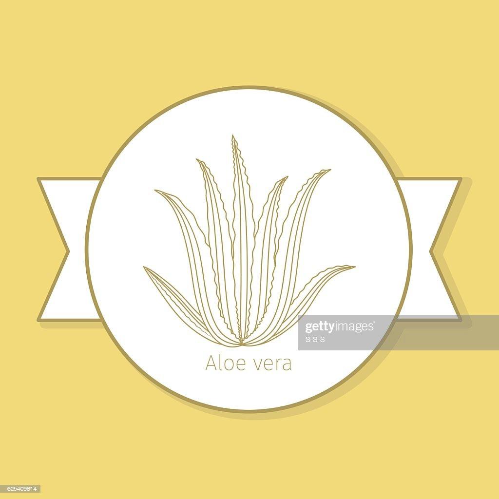 Aloe vera medicine plant yellow label